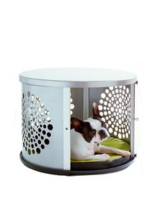 I have been wanting this dog house for years. It's half off and still SO out of my price range.