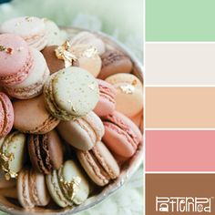 Sweets #patternpod #patternpodcolor #color #colorpalettes