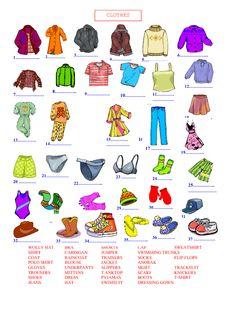 fiela se kind study guide pdf