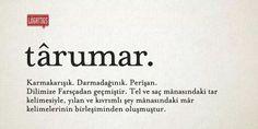 Târumar (confused).