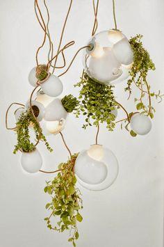 Escultóricas lámparas de vidrio soplado ó luminosos jardines verticales. | c@sas de pelicula