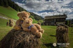 My Teddy Bear, Cute Teddy Bears, Teddy Hermann, Teddy Bear Pictures, Cute Sketches, Bear Wallpaper, Love Bear, Tatty Teddy, Bears