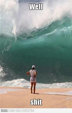 Need to learn to surf here! Waimea (North shore of Oahu) is known for its large waves and is a surfer's paradise Greys Anatomy Brasil, Waimea Bay, Perfectly Timed Photos, Finals Week, Belle Photo, The Funny, I Laughed, Funny Pictures, Hilarious Photos