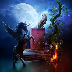 lilly-blanc: Tribute Read to me. Set the stage for my dreamy world. Take me to a place of enchanted forests and winged Pegasus'. ~Charlotte (PixieWinksFairyWhispers)