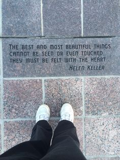 Love the Tampa Bay Riverwalk, this bit of inspiration adds personality to the city! Small Ponds, River Walk, Big Fish, Tampa Bay, Personality, Most Beautiful, Good Things, City, Inspiration