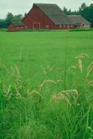 Hobby Farm Tax Deductions thumbnail