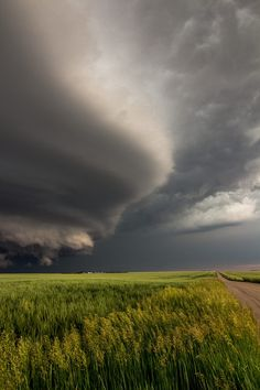 Tornado warned supercell . Colorado