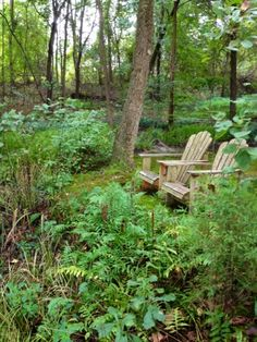 Gardens in Woodlands: SIMPLY SERENE SOLUTION