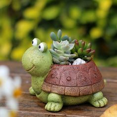 "Free Shipping on All Orders! Buy 2 & Save $5 - Use Coupon Code SPRINGSALE Brand NEW! Quantities Limited: Your succulents will love hanging out in these cool turtle pots! Three wonderful styles to choose from. - Pick classic green for Smooth Talking Sammy. He may be the most ""normal"" of the bunch but don't let that fool you, this guy will have all the ladies in your garden swooning. - Pick Salsa Dancing Seth for a little party fun in your succulent sanctuary. With his colorful shell every day…"