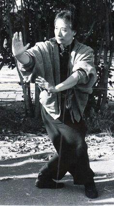 Chinese martial art Adam Hsu's Bagua Zhang