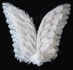 Large Angel Wings for Dress Up Holiday Recitals by TutuTiara
