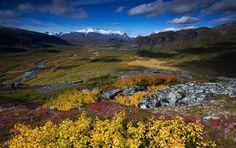 """Sarek bildades 1909 och var en av de första nationalparkerna i Europa. Tillsammans med de angränsande nationalparkerna Padjelanta, Muddus och Stora Sjöfallet samt det stora våtmarksreservatet Sjaunja utgör de UNESCOs världsarv Laponia, som med sina 9 400 km2 är ett av de överlägset största naturskyddade områdena i hela Europa. Lappland kallas ofta för """"Europas Alaska""""."""
