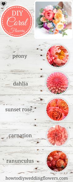 Coral and Peach Flower Wedding Trends! Coral Wedding Flowers and peach flowers! Peach wedding palette - All About Bridal Bouquet Coral, Coral Wedding Flowers, Diy Bouquet, Peach Flowers, Flower Bouquet Wedding, Diy Flowers, Peach Wedding Theme, Wedding Yellow, Coral Centerpieces