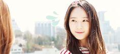 gifs mine f(x) Jessica snsd Krystal jessica jung krystal jung snsd jessica f(x) krystal soshigifs