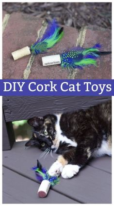 Inexpensive DIY Easy Feather Cork Cat Toys #catsdiystuff