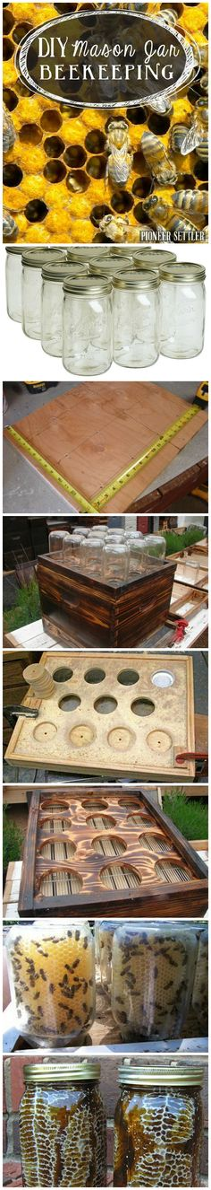 Organic Gardening Supplies Needed For Newbies Diy Mason Jar Beekeeping Bees And Beekeeping Tips And Recipes Pioneer Settler Diy Hive Building And Beekeeping 101 At Diy Jardin, Raising Bees, Backyard Beekeeping, Mini Farm, Ideias Diy, Save The Bees, Hobby Farms, Bees Knees, Urban Farming