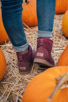 8377f513a5b 60 Best UGG SEASON. images in 2019 | Uggs, Ugg boots, Ugg classic