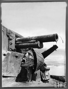 Severed head of a napalmed Japanese soldier propped up below gun turret of a disabled Japanese tank. This photo became an infamous token of the gruesome Guadalcanal Campaign. Famous Pictures, Ww2 Pictures, Ww2 Photos, Life Magazine, Guadalcanal Campaign, Gun Turret, American Soldiers, American War, Second World