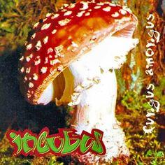 Incubus - Fungus Amongus