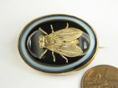 ANTIQUE ENGLISH VICTORIAN PERIOD GILT BANDED AGATE FLY / INSECT BROOCH c1880   eBay, sold for $236.50
