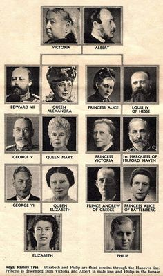 A magazine clipping of the royal family tree in the run up to the wedding of Queen Elizabeth and Prince Phillip, circa 👑💍 European Royal Family Tree, Royal Family History, Greek Royal Family, Royal Family Trees, Royal Family Pictures, English Royal Family, British Royal Families, Danish Royal Family, European History