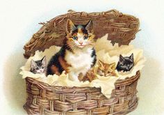 Calico Cat Fabric Block Cotton Applique Mama with Kittens