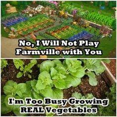 No Farmville for me...
