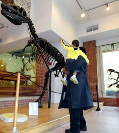 Joseph Moore Museum of Natural History, Richmond, IN. Love this photo!