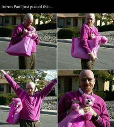 Aaron Paul~Breaking Bad~ And Wearing Purple :-D