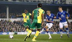 Norwich City v Everton - Premier League Preview