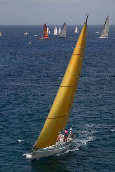 Antigua sailing week - yachts racing