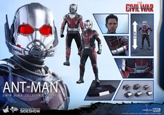 The Hot Toys Ant-Man Sixth Scale Figure is available at Sideshow.com for fans of Marvel's Captain America: Civil War and Paul Rudd.