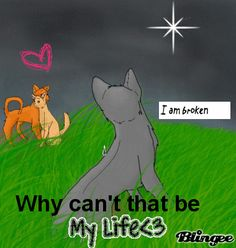 Warrior Cats Cinderpelt GIF OMG this is the best gif on the Internet I love it