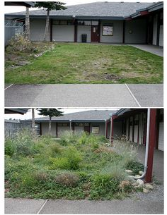 Yelm Highschool without and with a rain garden.