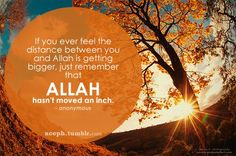 If you ever feel the distance between you and Allah is getting bigger, just remember that Allah hasn't moved an inch. Muslim Quotes, Islamic Quotes, Islamic Art, Allah, Friendship Quotes Images, Distance Between, Learn Islam, Islamic Videos, Timeline Photos