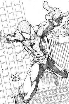 Spiderman 2013 pencils by hanzozuken on DeviantArt Spiderman Sketches, Spiderman Drawing, Marvel Drawings, Spiderman Art, Comic Book Artists, Comic Books Art, Comic Art, Comic Character, Character Design