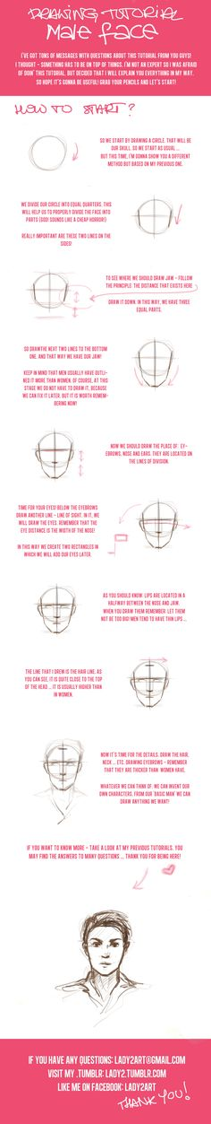 head_proportions_tutorial6. by Lady2 on DeviantArt