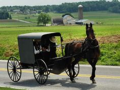 the amish | The Amish Exception – Building Permits | The Public Choice ...