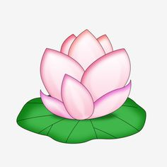 Lotus Flower Drawings Lotus And Flower Drawings On Pinterest Lotus Flower Drawing Flower Drawing Lotus Drawing