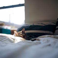 Good morning sleepy baby. Xo