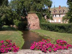 Dachstein - #Alsace