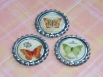 butterfly fridge magnets