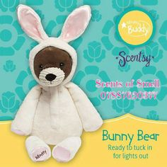 Bunny Bear - limited edition buddy. Available with your choice of Scent Pak #scentsy #buddy #bunny #bear