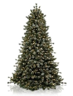 The Christmas tree Clay and I just ordered. Super excited not to pick up needles all season.