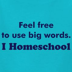 Confessions of a Homeschooling Dad (Tshirt from Made By Momma)