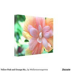 Yellow Pink and Orange Hawaiian Hibiscus Flower Canvas Print