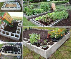 Cinder blocks are easy to work with. If you have missed, here is how to build DIY vertical cinder garden planter and here is how to make DIY garden bench we have shown you before. Today, we are going (Diy Garden Planters) Organic Gardening, Gardening Tips, Diy Jardim, Cinder Block Garden, Raised Garden Beds Cinder Blocks, Garden Blocks, Raised Planter, Diy Garden Bed, Easy Garden