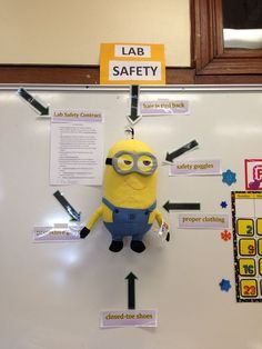 Science Fair Board Decoration Ideas Lovely Lab Safety Minions Setting A Good Example for My Sixth Science Lab Safety, Science Fair, Science Lessons, Science Activities, Science Ideas, Lab Safety Activities, Science Puns, Chemistry Experiments, Food Safety