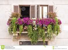 Italian Balcony Windows Full Of Plants And Flowers - Download From Over 40 Million High Quality Stock Photos, Images, Vectors. Sign up for FREE today. Image: 45118494