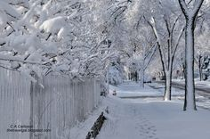 Spring in Minnesota: The Beauty of Spring Snow - http://explorationvacation.net/2013/04/photo-thursday-beauty-of-spring-snow/